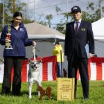 46th Annual AKIHO Show 3rd Place Sohken Female